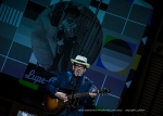 Elvis Costello - St Davids Hall June 2015 - DSC_4164l